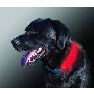 NITE IZE - Innovative Accessories - NI-NDCC - NiteDawg Collar Cover